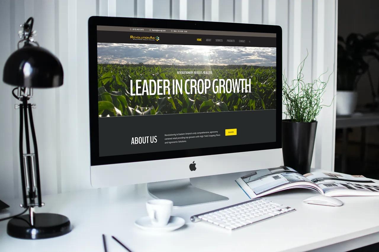 Revolution AG Website Development